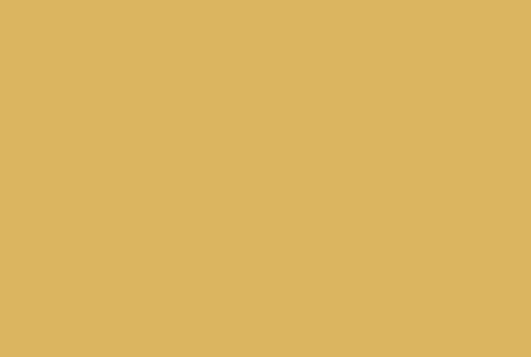 Die Schneiders Logo